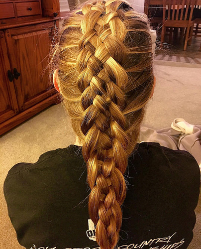 dutch braid photo
