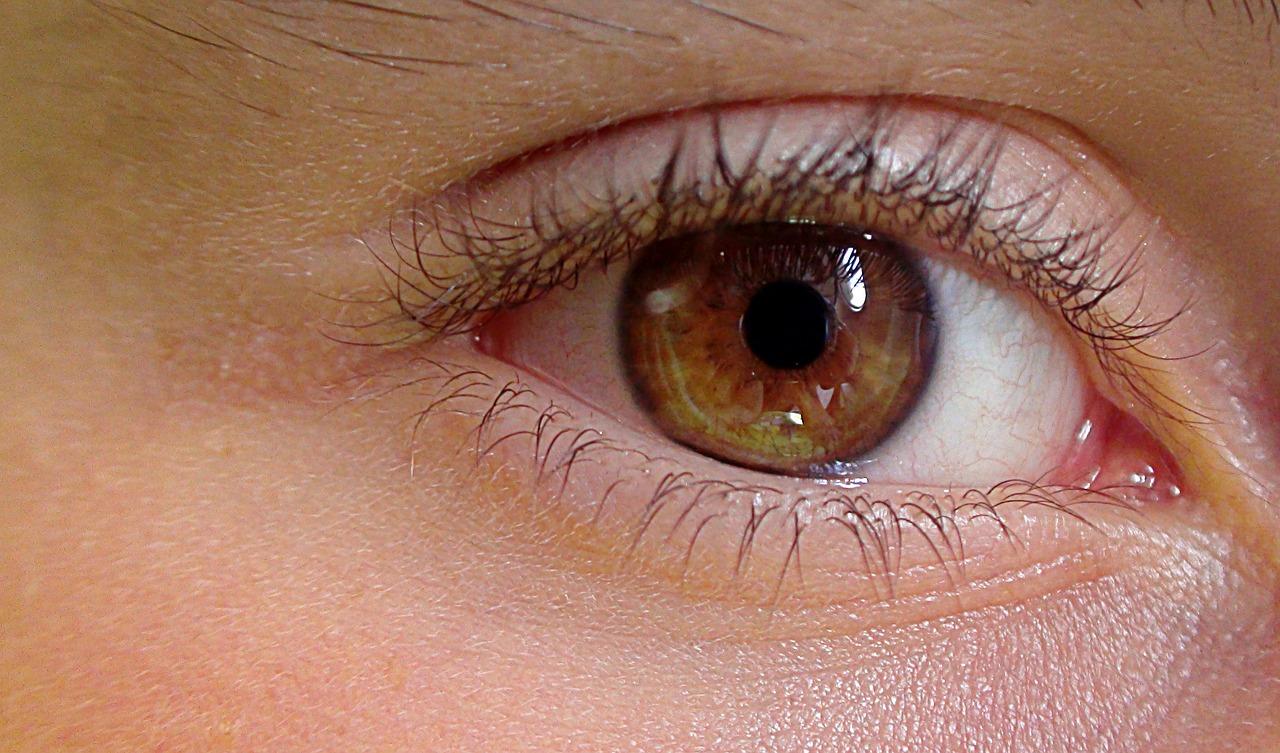 eyelids photo